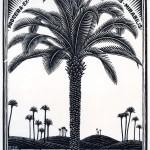 09_Palma